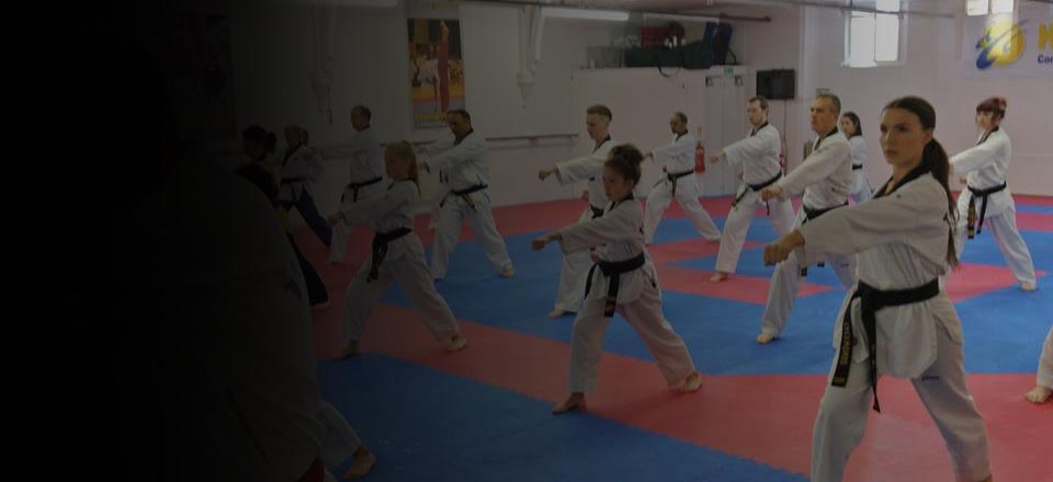 Taekwondo, Boxing, Kick Boxing, Jujitsu, Yoga, Dance and Fitness